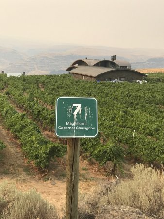 Cave B Estate Winery Quincy Tasting Room: photo8.jpg