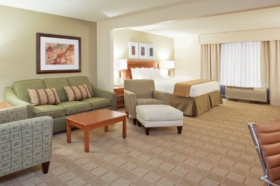Holiday Inn Express Indianapolis Downtown City Centre: Suite