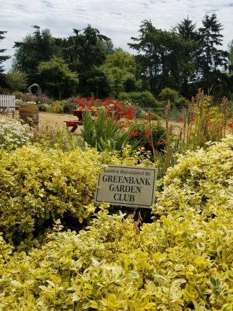 Greenbank, WA: 20170721_124058_large.jpg