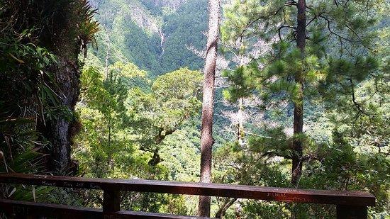 Gracias, Honduras: Lo logramos.....Mirador de La Cascada Santa Lucía 2000 msnm