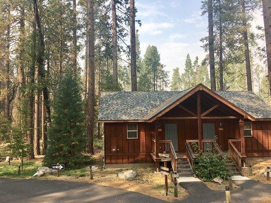Evergreen Lodge at Yosemite: photo0.jpg