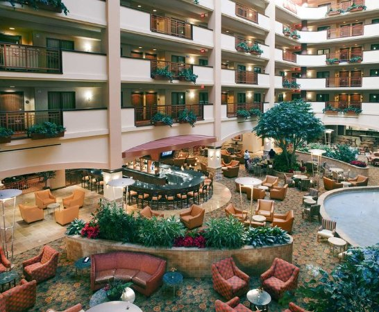 Embassy Suites by Hilton San Marcos - Hotel, Spa & Conference Center: Atrium / Lounge