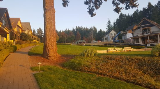 Roche Harbor Resort: Beautiful homes on the green, opposite construction.