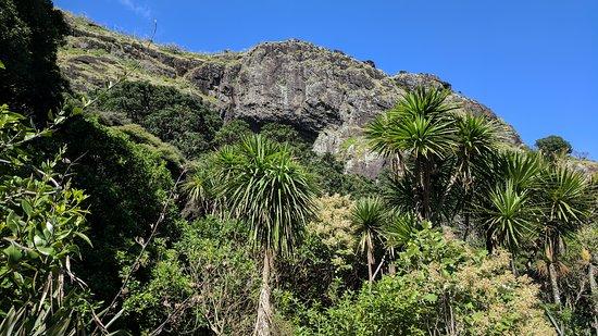 Piha, New Zealand: IMG_20170905_110937_large.jpg