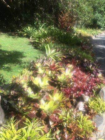 Whangarei, New Zealand: photo3.jpg
