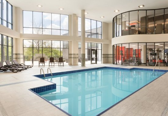Courtyard toronto mississauga west updated 2018 hotel for Pool show mississauga