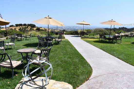 Calcareous Vineyard: The dining patio and view area