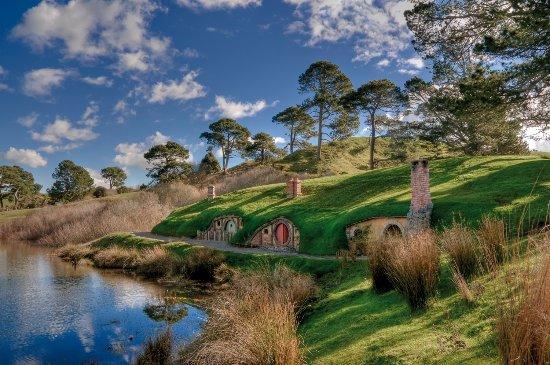NAVI Tours: Hobbiton Movie Set