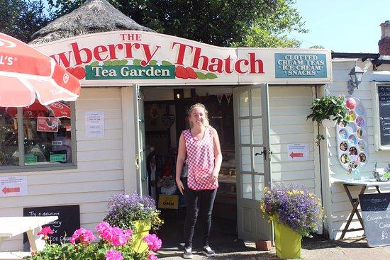 The Strawberry Thatch: I'M SHY