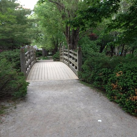 Kariya Park: bridge