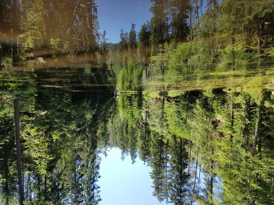 Hradec Kralove Region, République tchèque : Cudowne miejsce, które trzeba koniecznie zobaczyć