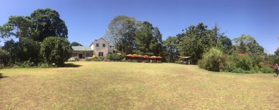 Limuru, Kenya: The house and front yard