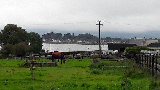 Dungarvan, Ιρλανδία: 20170904_155034_large.jpg