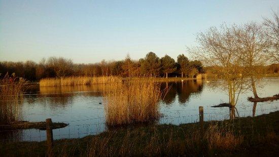Rushcliffe Country Park照片