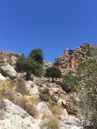 Gorge of the Dead (Kato Zakros, Greece): Top Tips Before ...