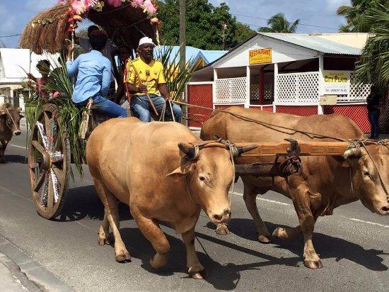 Capesterre, Guadeloupe: Un convoi en charrette à la plage du 3ème pont à Grand-Bourg
