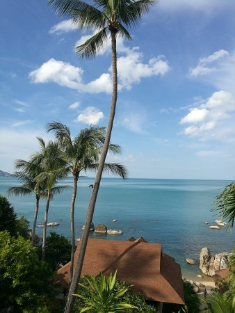 Coral Cove Chalet: Swimming pool and Deluxe bungalow sea view