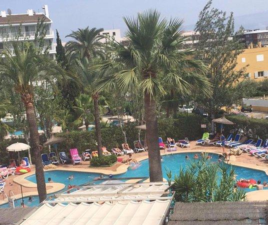 Sol de Alcudia Apartments (Majorca, Spain) - Apartment Reviews, Photos & Price Comparison ...