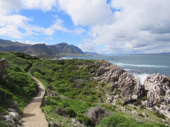 Херманус, Южная Африка: Hermanus cliff-path.  Walk from our guest (The Potting Shed) to Grotto beach