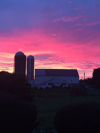 Gambar Rayba Acres Farm
