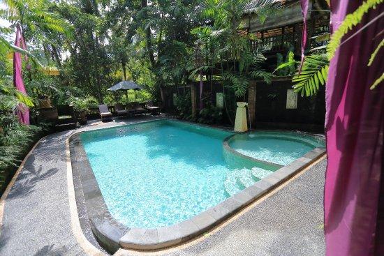 Bali Putra Villa: Our Main Pool