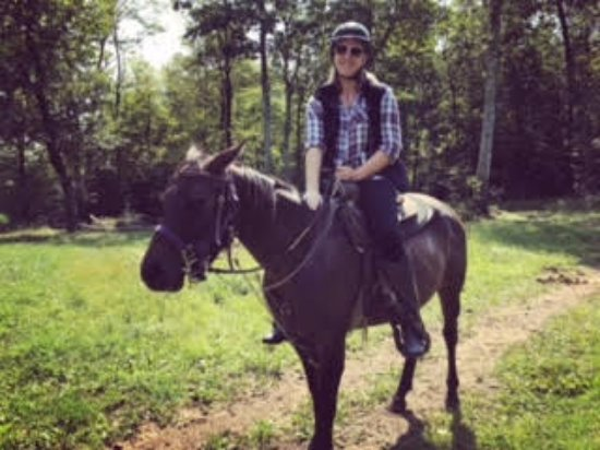 Princeton, MA: Such a beautiful and well trained horse. Malarkey made my ride so pleasant and fun!