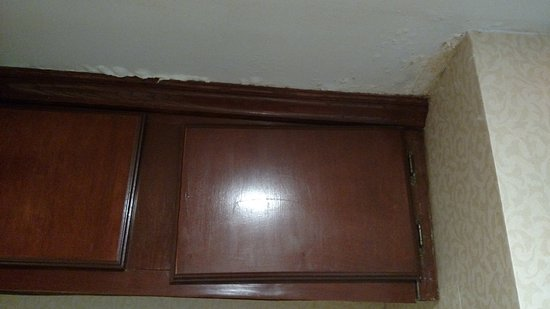 Kitchen Cabinet And Water Damage Picture Of Holiday Inn Dallas