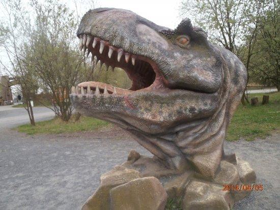 DinoPark Ostrava: rex