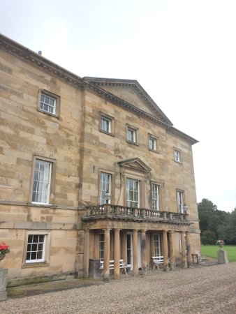 Barnard Castle, UK : Black sheep were the most interesting thing about this beautiful building with it's threadbare i