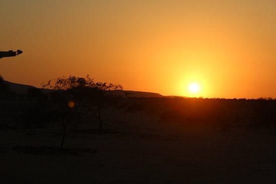 Dimona, Israel: IMG_1366_large.jpg