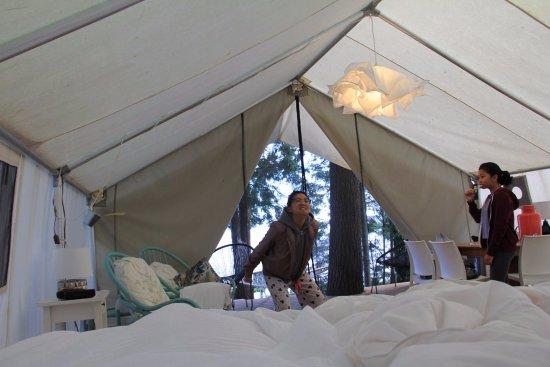 Sundridge, Kanada: All perked up after a wonderful sleep