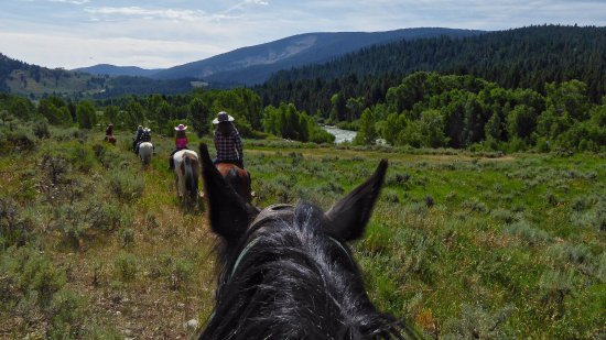 Kelly, WY: Trail riding