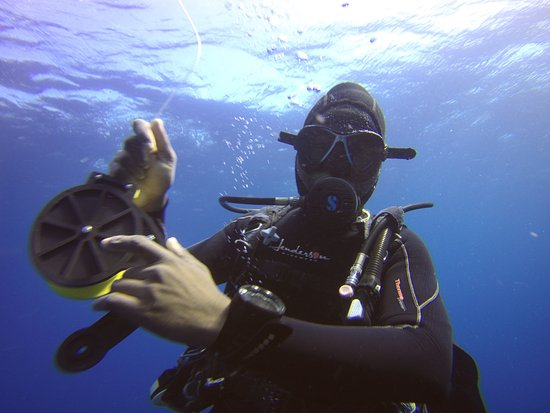 Adamo, one of Tofo Scuba's awesome instructors, leading our dive.
