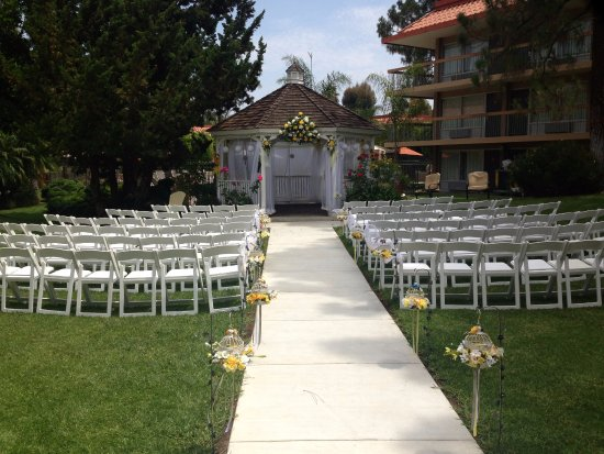 Palm Garden Hotel: From your ceremony, to your reception. We'd love to help plan your perfect day!