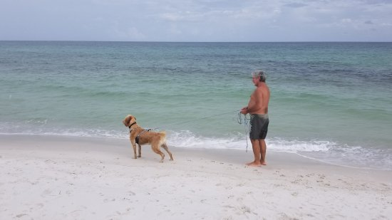 Pensacola Beach East Dog Park