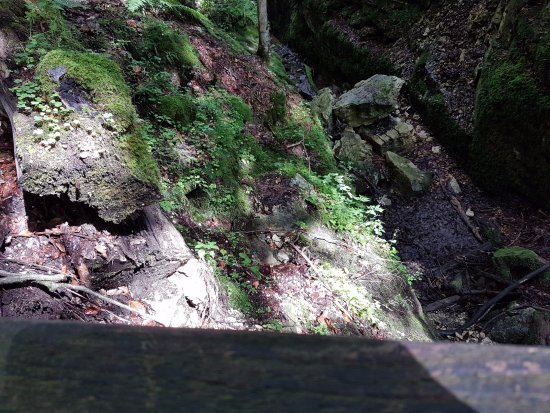 Styria, Østrig: Nature still untouched