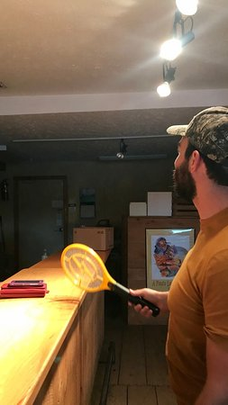 Suttons Bay, มิชิแกน: My friend offered to help the staff kill fruit flies, using the zapper racquet I mentioned.