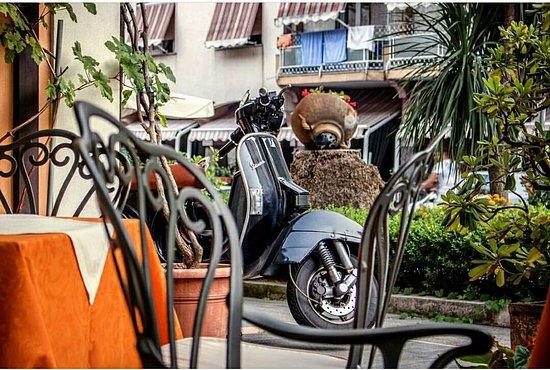 Consorzio di Tutela Limone Costa d'Amalfi I.G.P.