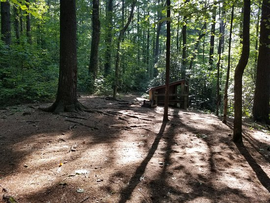Chatsworth, GA: Site 1 Fort Mountain Squirrels Nest Platform Camping area