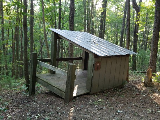 Chatsworth, GA: Platform 6 Fort Mountain Squirrels Nest Platform Camping area