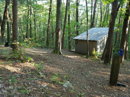 Chatsworth, GA: Site 6 Fort Mountain Squirrels Nest Platform Camping area