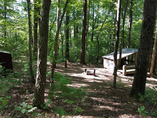 Chatsworth, GA: Platform 3 with bear box Fort Mountain Squirrels Nest Platform Camping area