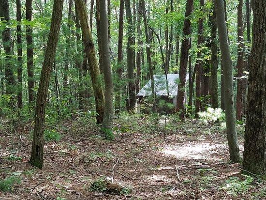 Chatsworth, GA: Site 6