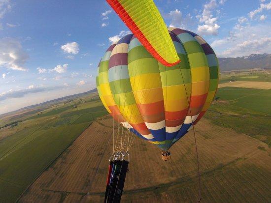 Bigfoot Balloons: Morning sunshine on the balloon.