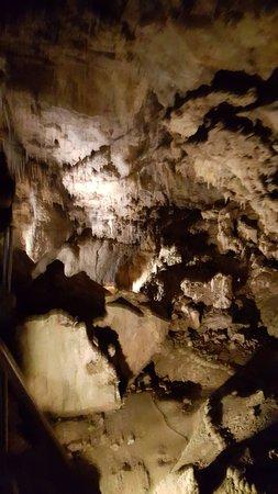 Lake Shasta Caverns: caverns