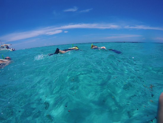 George Town, Grand Cayman: Crystal Clear waters for surface snorkeling.
