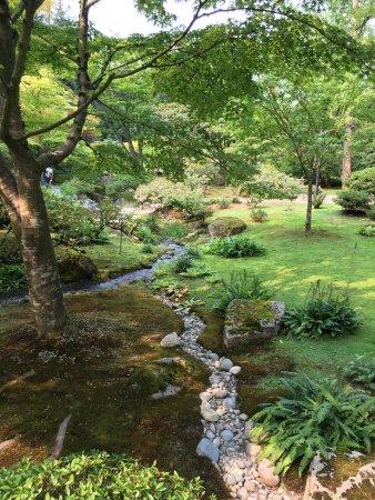 Seattle Japanese Garden : photo5.jpg