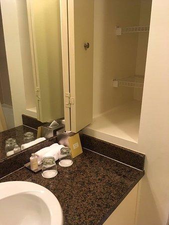 Sonesta Coconut Grove Miami: Bathroom vanity area