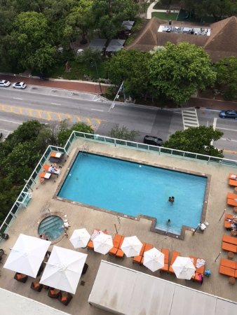 Sonesta Coconut Grove Miami: View of Sonesta pool area from balcony on 17th floor