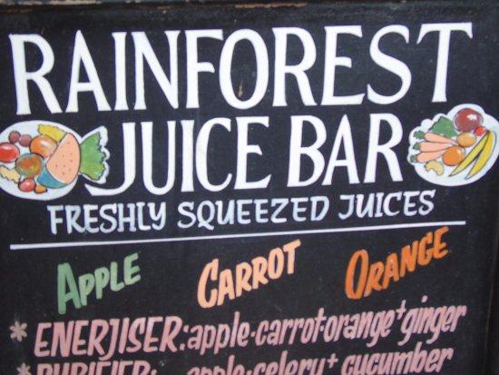 The Rainforest Cafe: tablica informatyczna